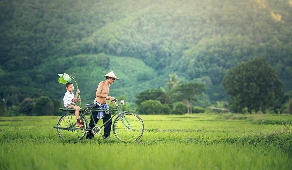 ベトナム田舎